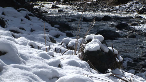 Snow-covered riverbank Stock Video Footage