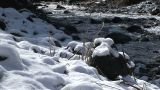 Snow-covered riverbank Footage