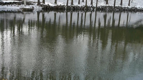 Forest reflection in water,ripple,snow Footage