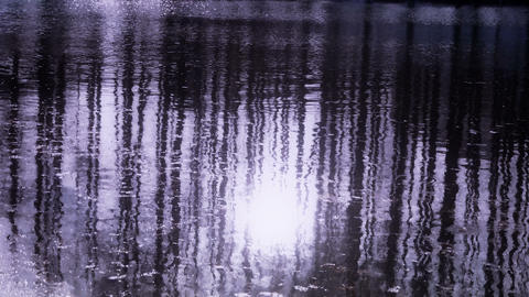 Forest reflection in water,ripple,snow,sunshine Stock Video Footage