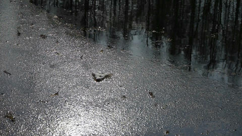Forest reflection in water,Sparkling ripple,snow Stock Video Footage