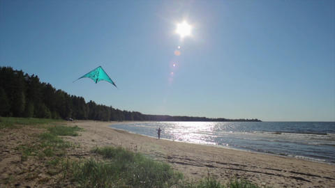 Kite fly in summer sunny day on beach. Silhouette man on background. Slow motion Footage