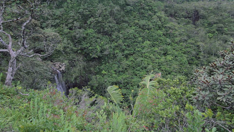 Waterfall in Black River Gorges Nationalpark, Mauritius Footage