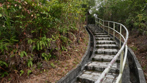 Stone-paving staircase in forest. Climb up to hill top, pavilion construction Footage