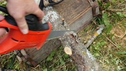 Man Pruning Branch With A Small Saw Footage