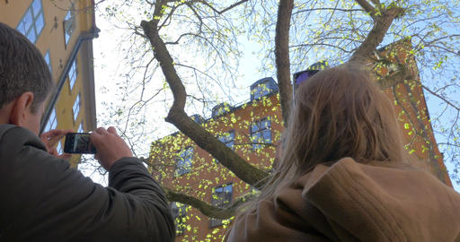 Friends Taking Photos of Tree in Stockholm Footage