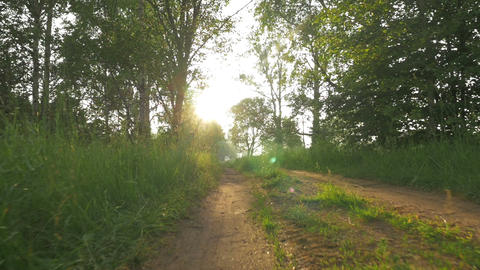 Unsurfaced Country Road at Dawn Footage