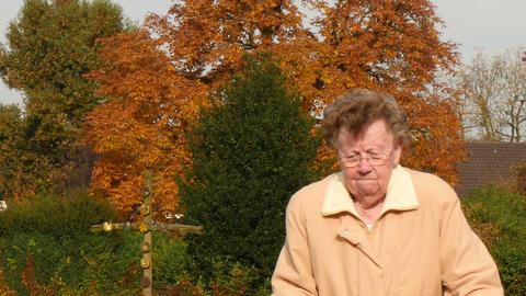 pensioner wheel walker autumn park walk through camera 11770 Live Action