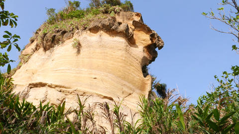 Tilt up to eroded rock formation rise above grass bunch, Yehliu Geopark Footage