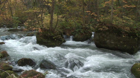 Mountain stream Stock Video Footage