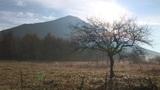 Autumn Landscape Footage