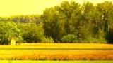 Beautiful Summer Countryside 06 stylized Footage