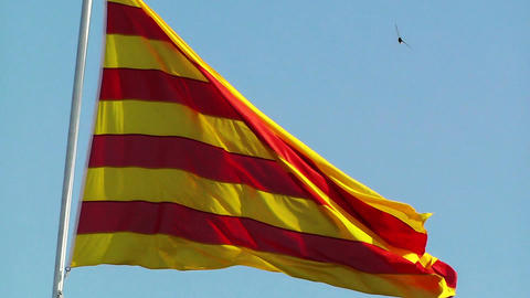 Flag of Catalonia Stock Video Footage