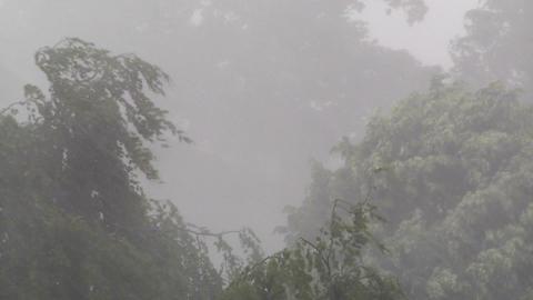 Heavy ThunderStorm 05 Stock Video Footage