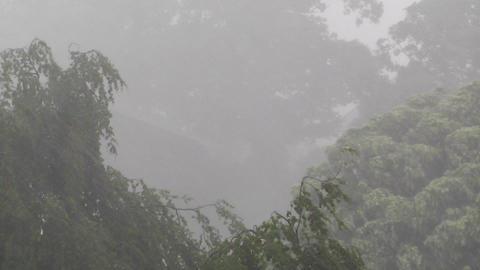 Heavy ThunderStorm 05 Footage