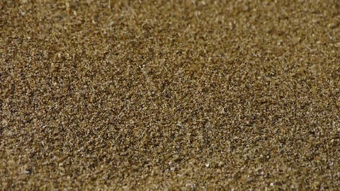 sand,wind blow sand particles on beach Footage