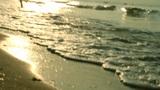 WAVES Footage
