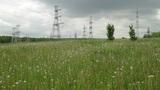 power pylons on field Footage