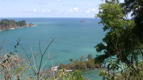 Manuel Antonio National Park Footage