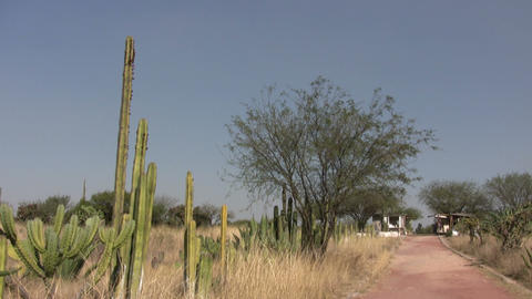 Country road at Tula Footage
