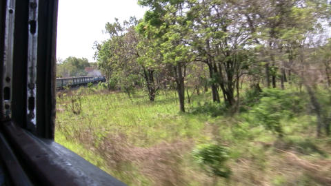 Train Passing Through a Forest Footage