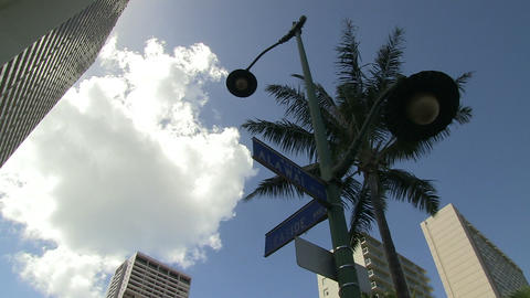Low Angle View of Skyscrapers, Waikiki Footage