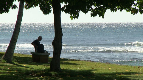 Woman Sitting On Bench, Ala Moana stock footage