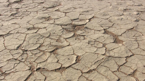 Cracked Landscape in Namib Desert, Namibia Footage