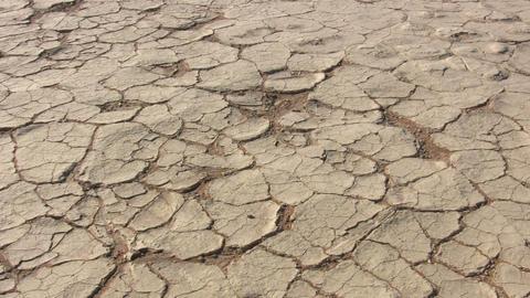 Cracked Landscape in Namib Desert, Namibia Footage