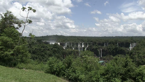 Forest With Iguazu Falls In The Background stock footage