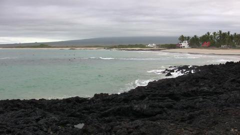 Isabela Island ビデオ