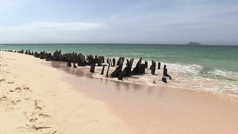 Waves Breaking on Beach, North Seymour Island ビデオ
