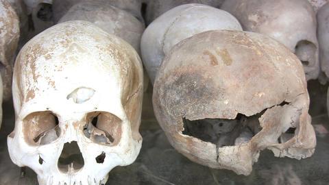 Human Skulls in Killing Fields Footage