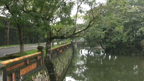 Reflection Of Trees In Canal ビデオ