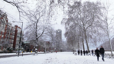 Snow Covered Park, Hyde Park Footage