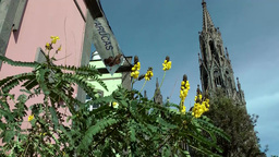 Spain Gran Canary Arucas 010 old town,church tower,flowers,house corner Footage