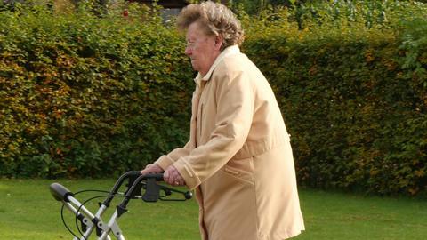 pensioner wheel walker in autumn park side 4k 11774 Live Action