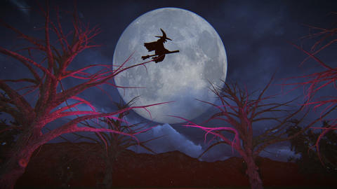 Day Of Witch Sitting Witch On A Broom Passing On The Full Moon stock footage