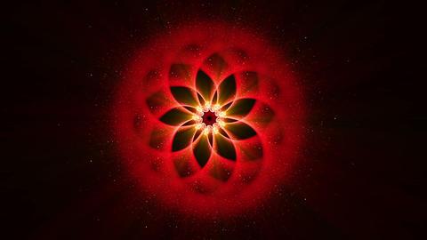 Red Ornamental Round Pattern, Mandala, Festive Background Animation