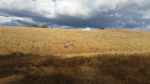 Australian Landscape Rural Country Establishing Shot - 4K stock footage