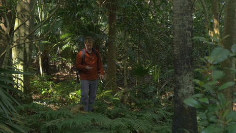 Man Hiking exploring In Jungle Rainforst using compass navigation orienteering Footage