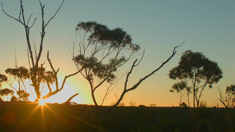 Australian Sunset Landscape Establishing Shot Footage