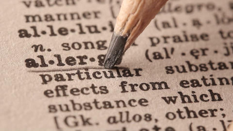 Allergy - Fake dictionary definition of the word with pencil underline Live Action