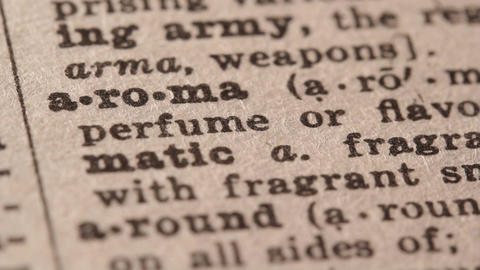 Aroma - Fake dictionary definition of the word with... Stock Video Footage