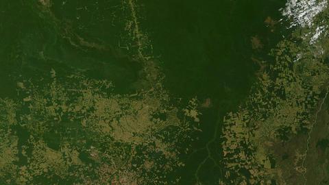 Deforestation Amazon Rainforest - Overpopulation Footage