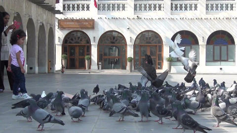 Little girl gives food to pigeons on square Footage