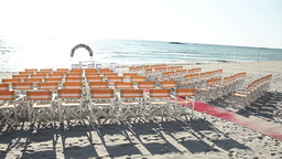 wedding ceremony on the beach Live Action