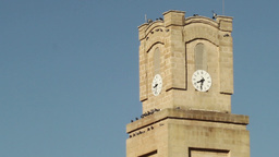 pigeons on the clock tower in the Italian city Footage